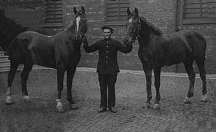 firemen and horses