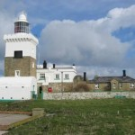 Trowels To The Rescue, Coquet Island (North East)
